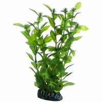 Hobby Artificial plant - Hygrophila large
