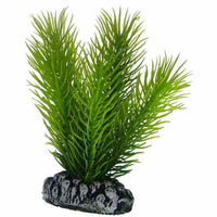 Hobby Artificial plant - Mayaca small