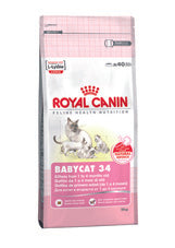 Royal Canin- Feline Health Nutrition Babycat