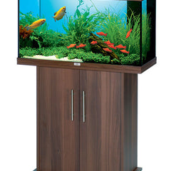 Fish Aquariums | Over 60 Litres