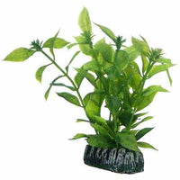Hobby Artificial plant - Hygrophila small