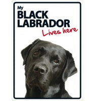 Black Labrador Lives Here Sign