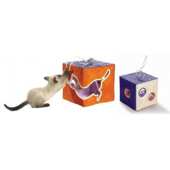 Bobby Poursuite Cat Scratching Toy - Orange