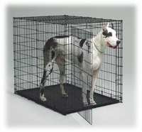 Midwest Double Door Big Dog Crate- Black