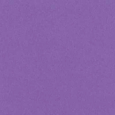 "Bazzill Smoothies 8.5x11"" Cardstock Grape Delight"