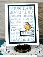 Darkroom Door Sentiment Stamps Thank You