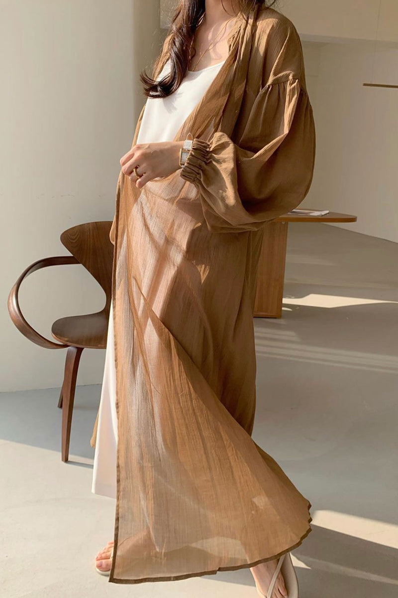 Brown Sheer Long Jacket