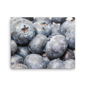 Beautiful Blueberries on Canvas - Original VIP Photography