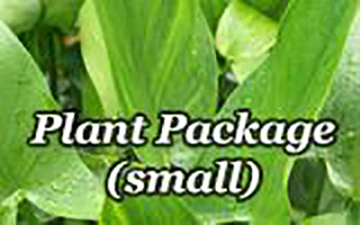 Plant Package (Small)
