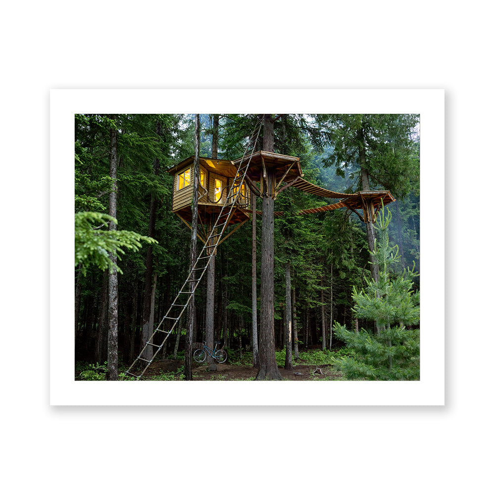 Ethan's Treehouse