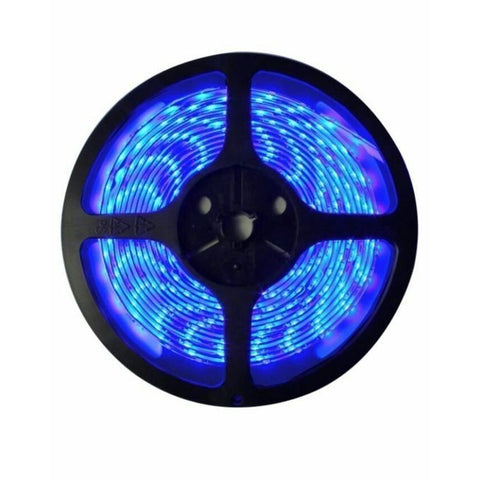 Blue Led Light Strip 5M With 12 v Adapter