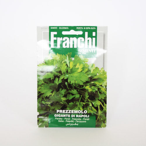 Flat Parsley Seeds