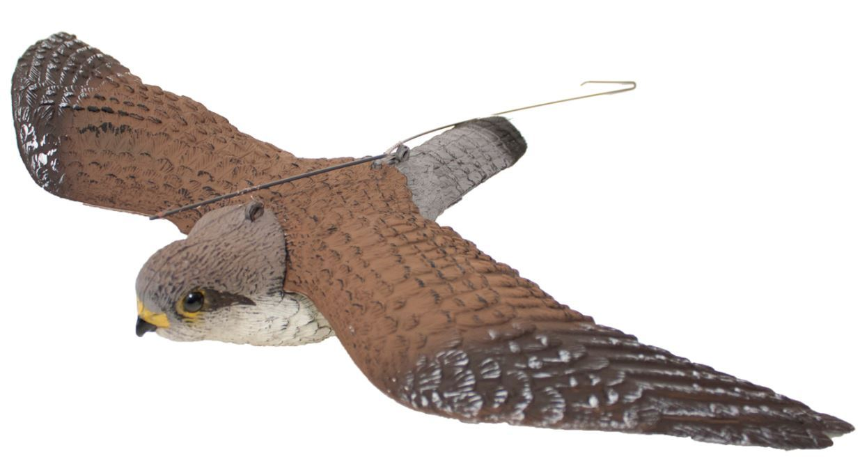 Flying Kestrel by Sport Plast - reid outdoors