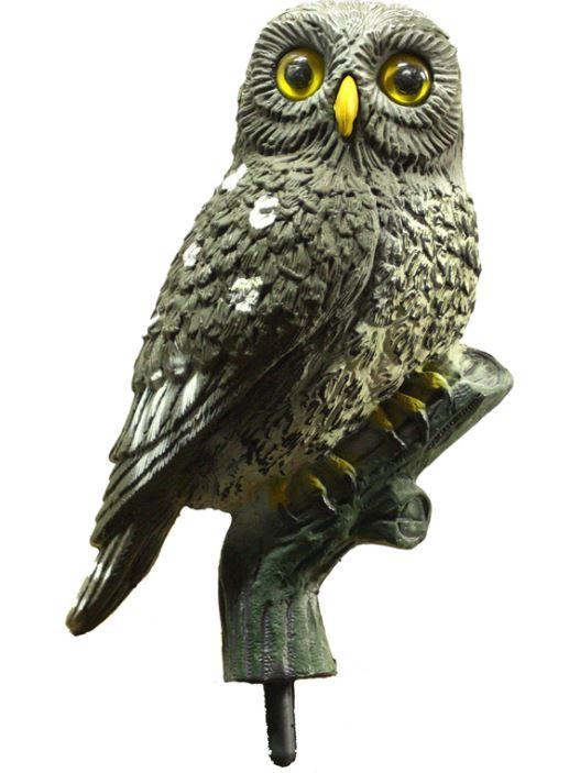 Little Owl by Sport Plast (Fixed or Beating Wings) - reid outdoors