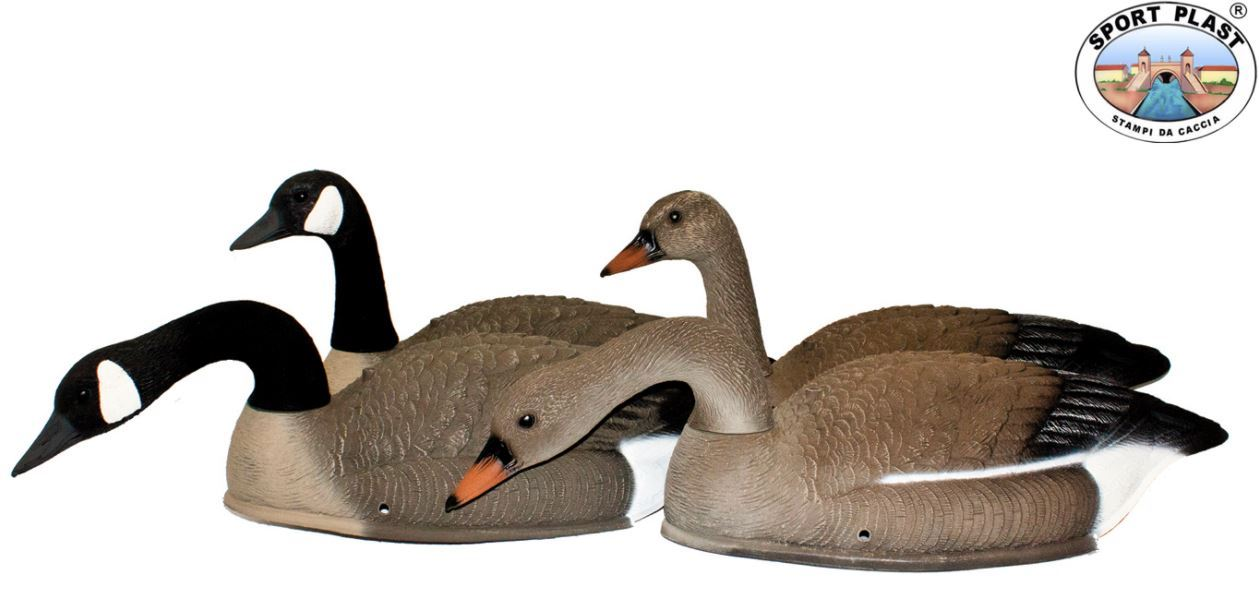 Shells Canada/Bean Goose Set of 6 by Sport Plast
