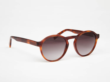 Moris sunglasses - stylish and affordable - oodzy