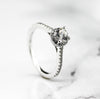 alto created diamonds , lab diamonds , created diamonds , hallo ring , ladies engagement ring , white gold engagement ring