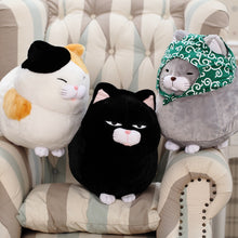Cute Chubby Kitty Cat Plush