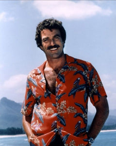 THE ALOHA SHIRT - FROM HAWAII TO THE HIGHSTREET