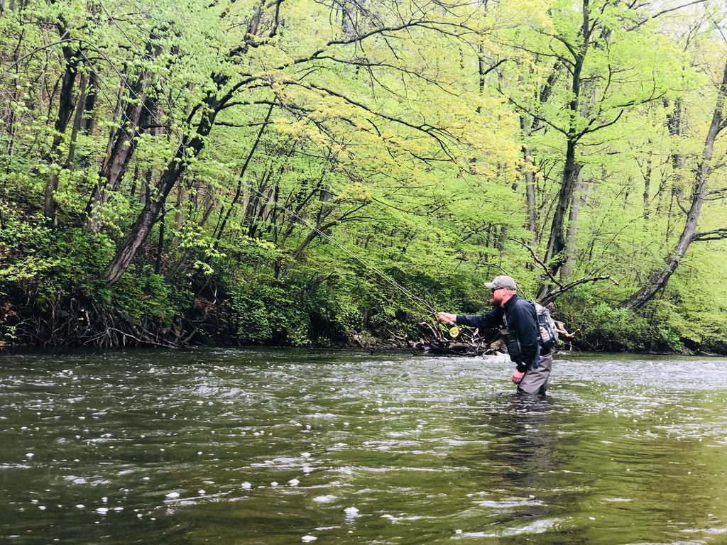 May 24, 2019 | Trout Season