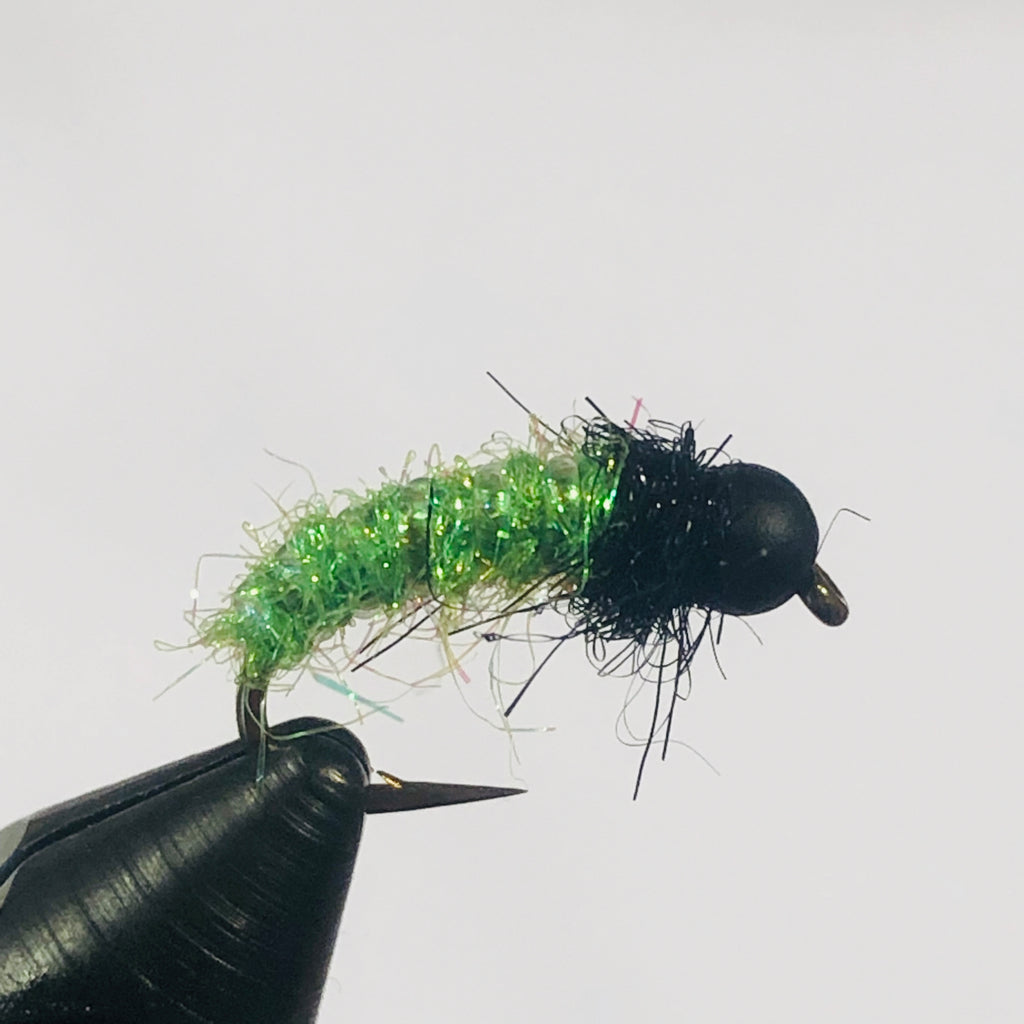 Vernal Caddis