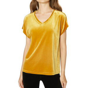 Holly Velvet Vneck Top