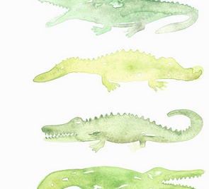 Watercolor Alligator Print