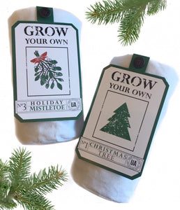 Holiday Grow Your Own Kit