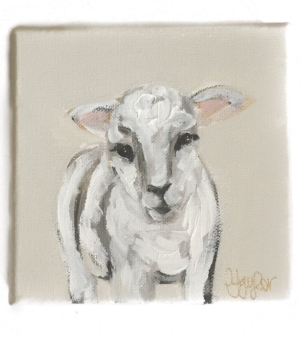 GD-6X6 Canvas Lamb