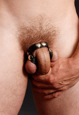 LEATHER V C-RING AND BALL ISOLATOR