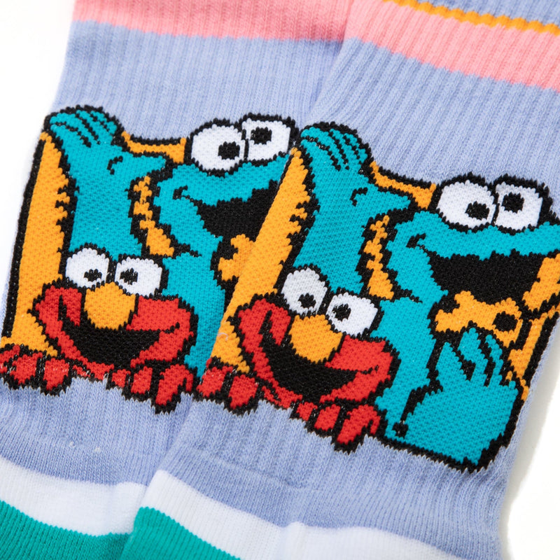Sesame Street Elmo and Cookie Monster Socks