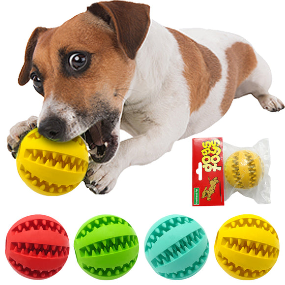 Nontoxic Rubber Pet Dog Tooth Cleaning Ball Toy Puppy Cat Training Interactive Chew Toys Bite Resistant Red Green Blue Yellow - Swag for My Dog