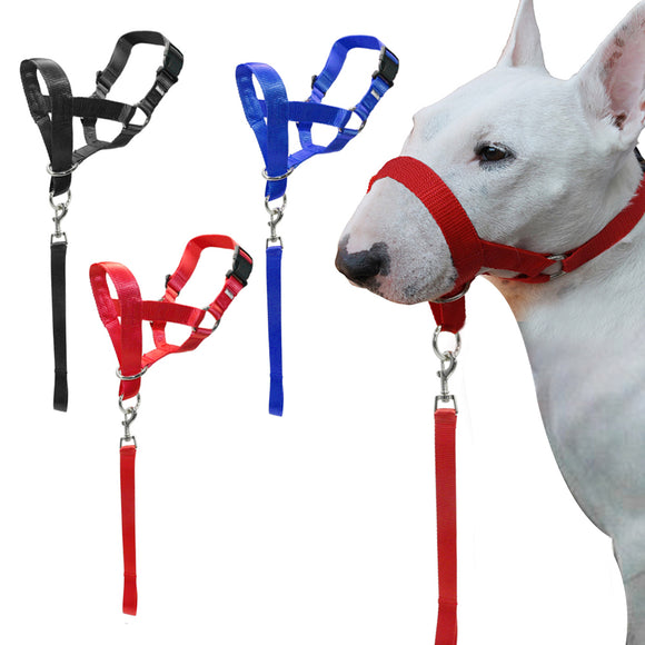 Nylon Dog Training Halter - Swag for My Dog