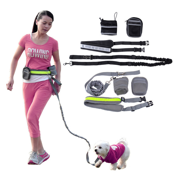 Handsfree Dog Leash With Pouch - Swag for My Dog