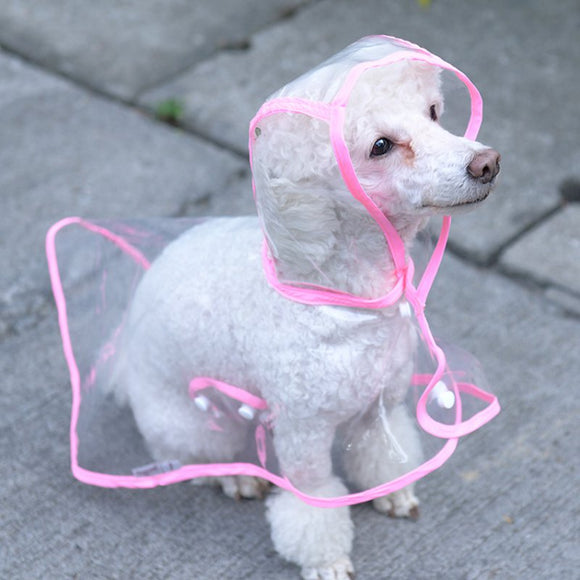Transparent Dog Raincoats Small Teddy Dog Wear Waterproof Rain Cape - Swag for My Dog