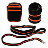 Waist Dog Leash for Running and Jogging Hands Free - Swag for My Dog
