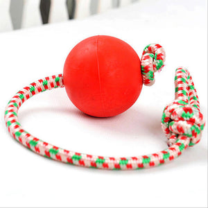 Rubber Ball & Rope Chew Toy - Swag for My Dog