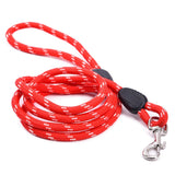 Nylon Dog Walking & Lead Leash | 3 Colors - Swag for My Dog