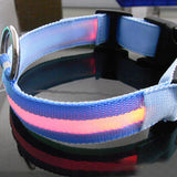 Flashing LED Nylon Dog Safety Collar - Available in 8 Colors and 4 Sizes - Swag for My Dog