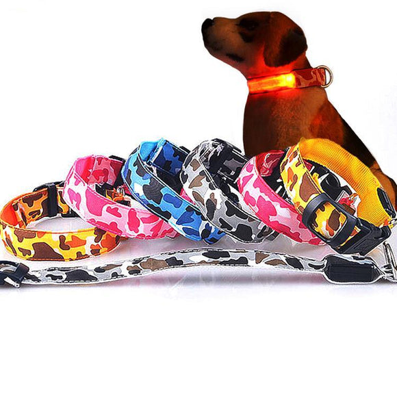 Lovely Glowing Dog Collar - Swag for My Dog