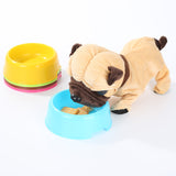 New Style Pet Cat Dog Food Exquisite Plastic Food Feeding Water Dish Bowl 5 color available - Swag for My Dog