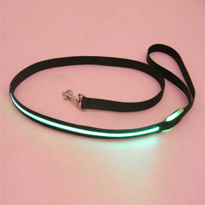 Pets Dog Safety Collar 8 Colors LED Leash Rope Belt Flashing Harness Lead Light Black Nylon - Swag for My Dog