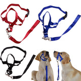 Attractive Dog Leash with Harness - Swag for My Dog