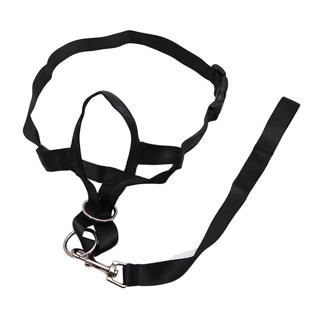 Dog Belt Harness