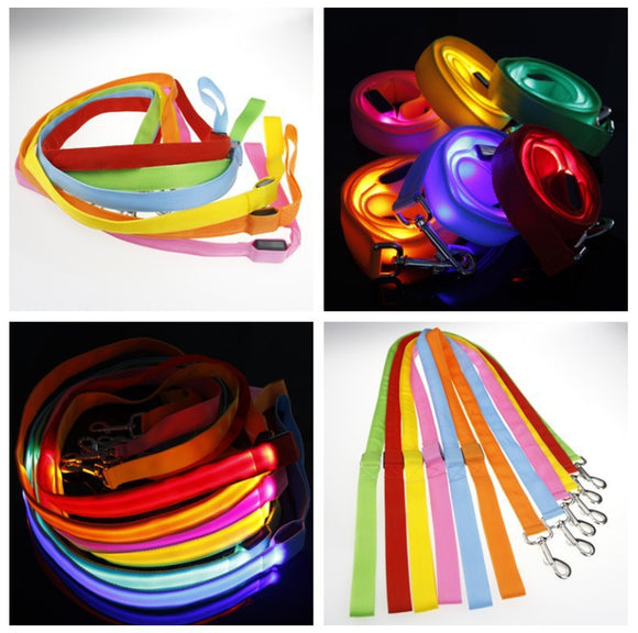 Nylon Pet LED Dog Leash for Night Safety with LED Flashing Glow - Swag for My Dog