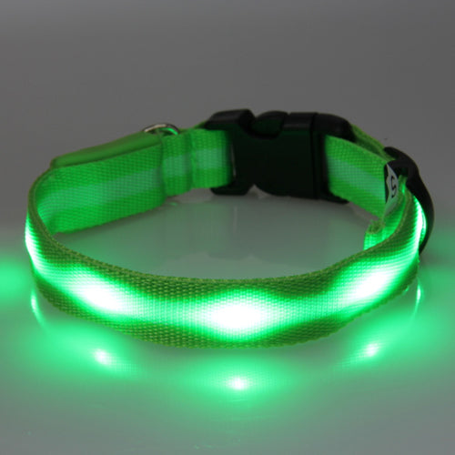 Cool LED Nylon Flashing Glowing Dog Safety Collar - Swag for My Dog
