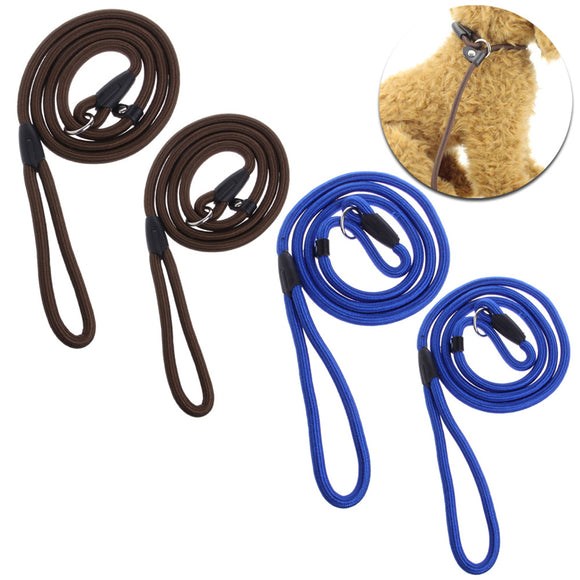 Nylon Rope Dog Leash with Slip Leash Lead Collar - Swag for My Dog