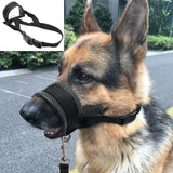 Padded Dog Head Collar - Swag for My Dog