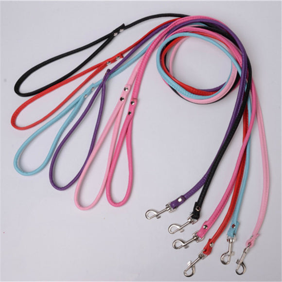 Bright Leather Dog Leash - Swag for My Dog
