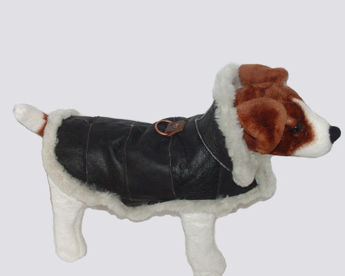 Genuine Sheepskin Dog Coat - Real shearling handmade. Dog jacket made with sheepskin and sheep wool by Ben Katz - Katz Leather